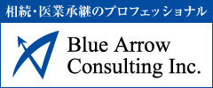 Blue Arrow Consulting Inc.